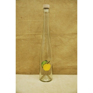 Fľaša 0,5 L s ovocím B